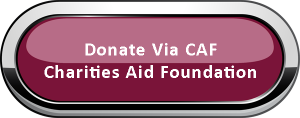 donate_via_caf_button