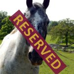 trio_reserved