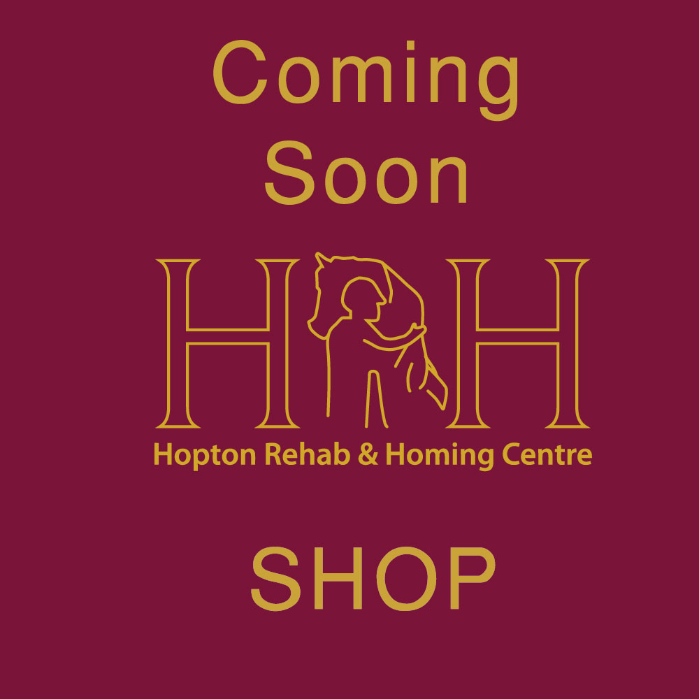 coming soon image for alternative shopping with hrh