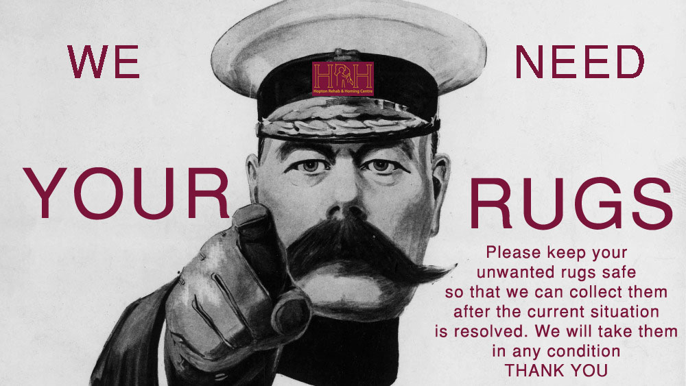 we need your rugs appeal