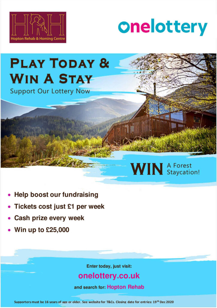 Win a froest staycation with hrh lottery