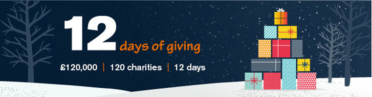 12 Days of Giving Charity prizes