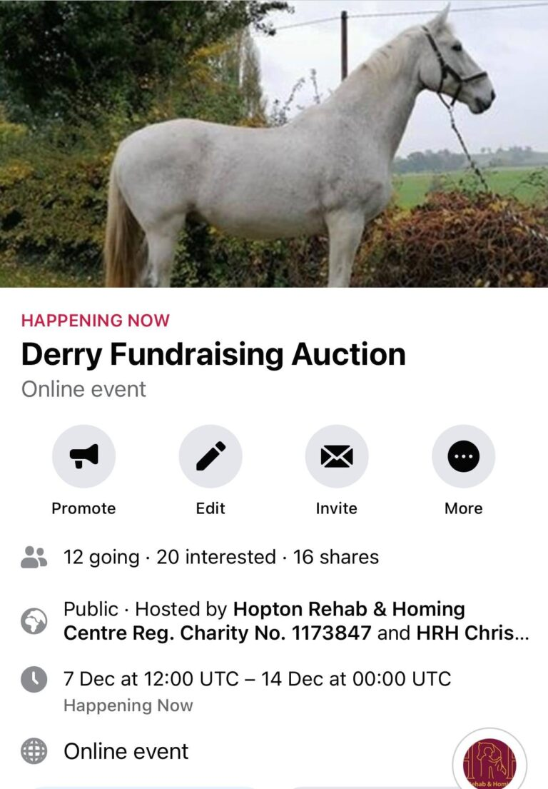 Derry Fundraising Auction here's Derry