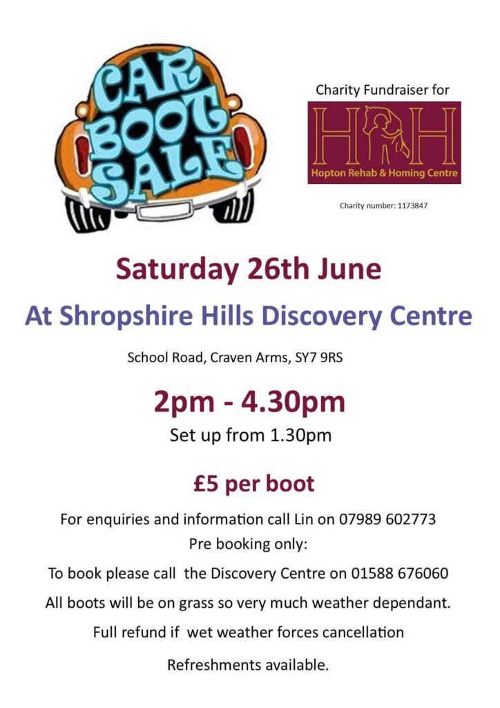 Poster for HRH Car Boot Sale