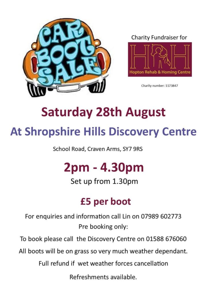 Home car boot sale August 21